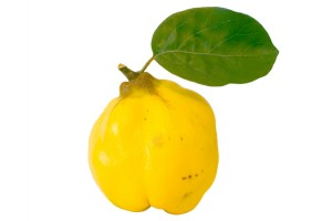 quince-gutuie